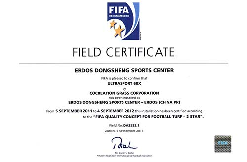 国际足联2星认证